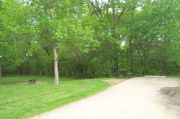 Photo: 136, Lakeside Campground Loop (sites 100-149)